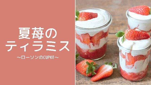 Eye catch:summer berry tiramisu